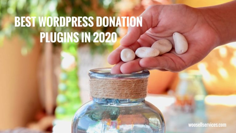WordPress Donation Plugins